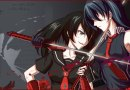 Red eyes sword - Akame ga Kill !