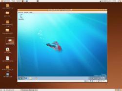 Windows 7 on Ubuntu