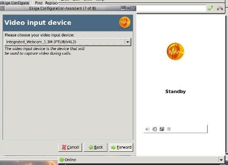 Video Input