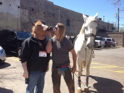 Horse-boy - Horses for Autism