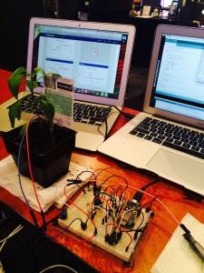 plants v zombies at YICTE