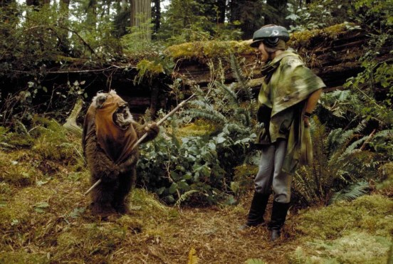 star-wars-return-of-the-jedi-redwood-3