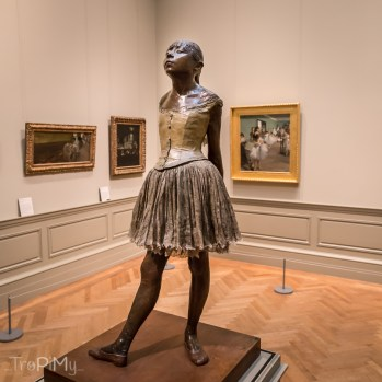ny_museums_met-31