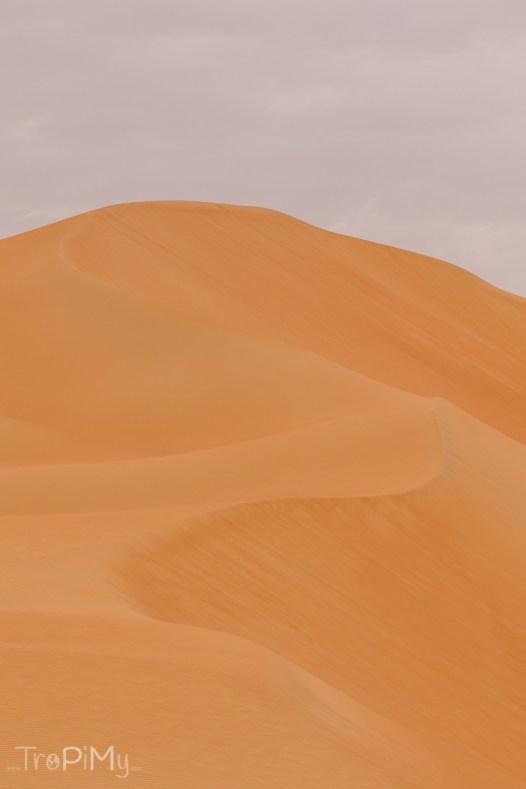 tropimy-uae-pustynia-15