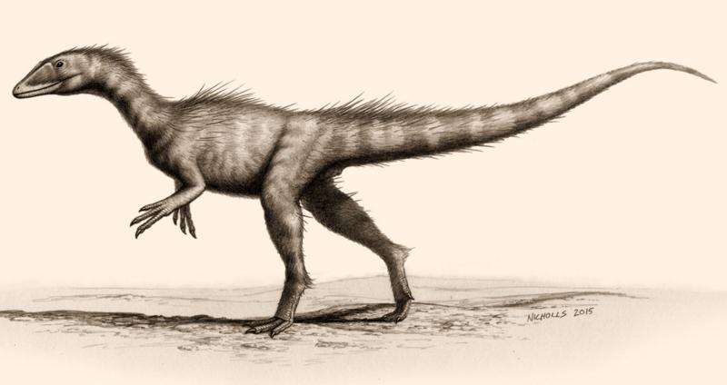 Dracoraptor hanigani - Bob Nichols