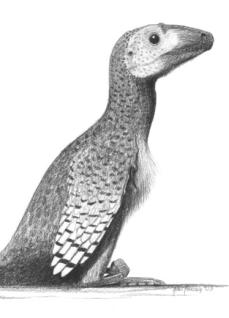 Deinonychus antirrhopus John Conway
