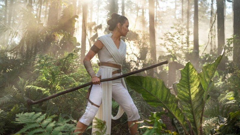 Rey Skywalker Palpatine