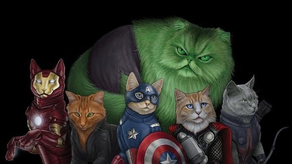 Risultati immagini per gatto hulk