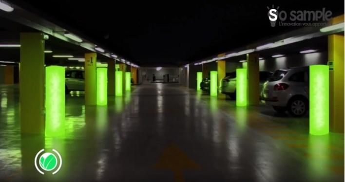 eclairage-microalgues