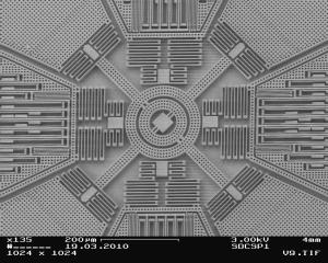 The interior of a 3-D MEMS Gyroscope Sensor is intricate and tiny (the width of this structure is only about 800 micrometers).