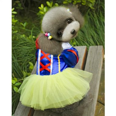 costumes-chien-halloween-15
