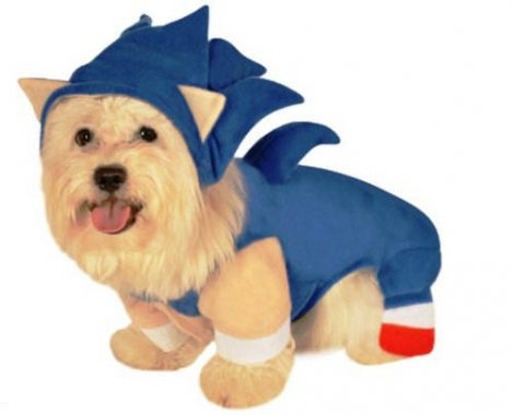 costumes-chien-halloween-20