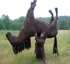 guy_carrying_horse
