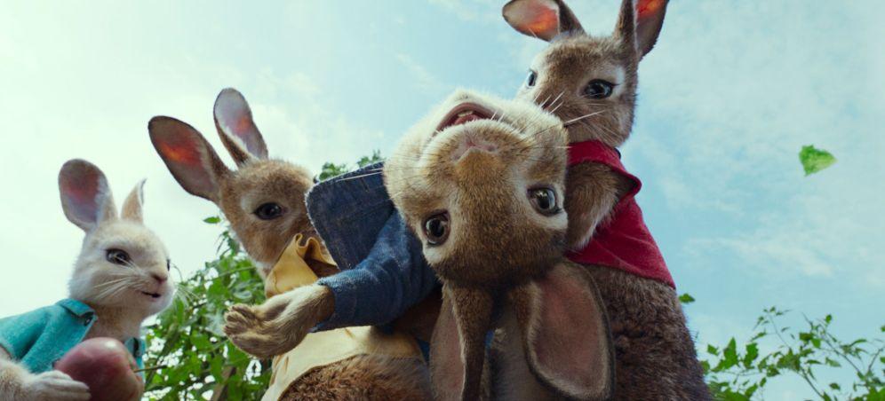 Pierre-lapin-famille