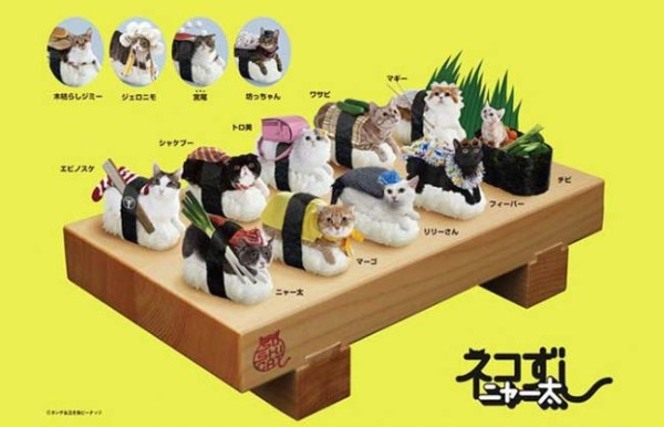cats as sushi_group