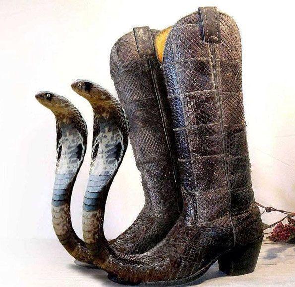 cobra-boots