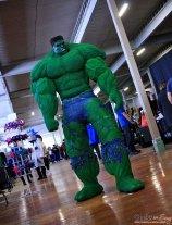 The Hulk - Shawincon 2019