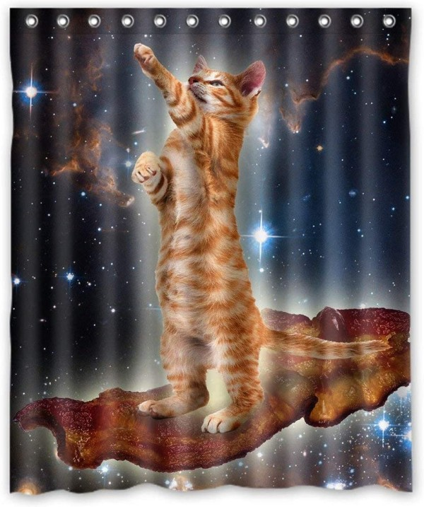 bacon cat in space bathroom shower curtain