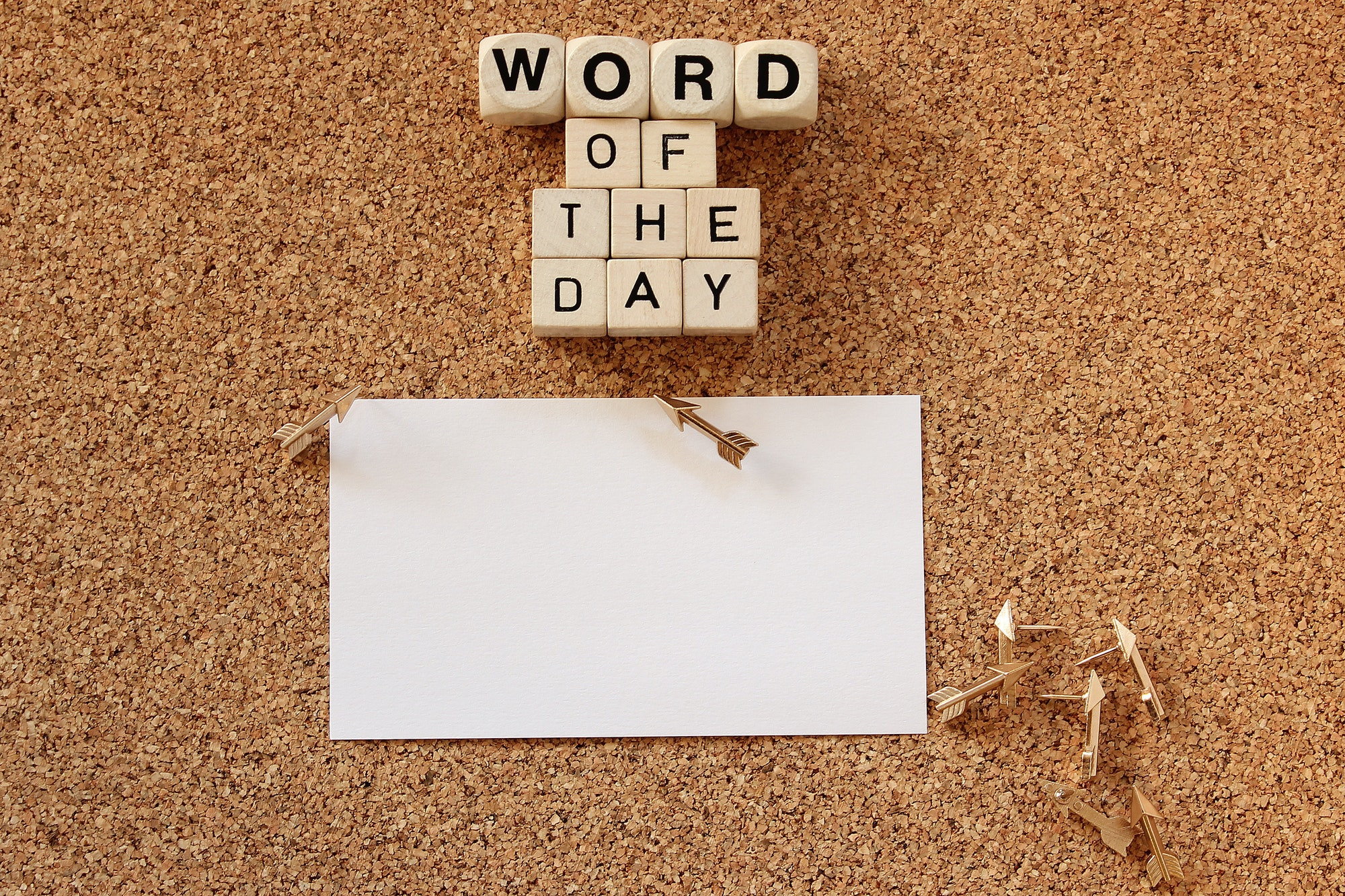 Word of the day concept