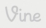 Twitter Vine logo