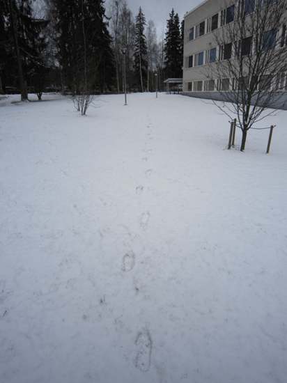 Footprints in the snow lead to nearby building