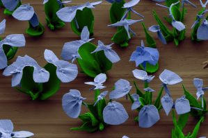 Tiny flowers the size of a human hair