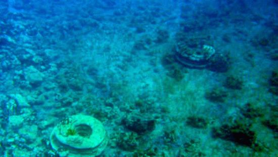 Archaeological site discovered off the Alikanas beach on northeast Zakynthos