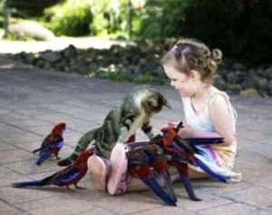 Girl surrounded by birds as cat takes interest