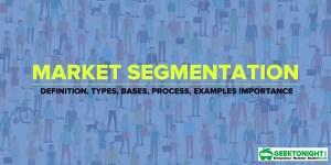 Market Segmentation | Definition, Types, Bases, Examples