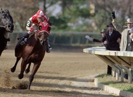 TV Shows & Films about Horse Racing