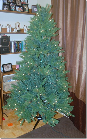 Unboxing a Christmas Tree 2009-11-27 049