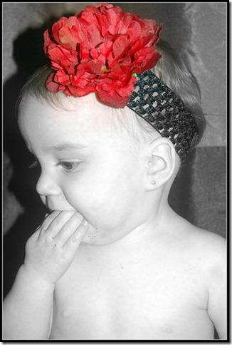 VioletFlower (4)