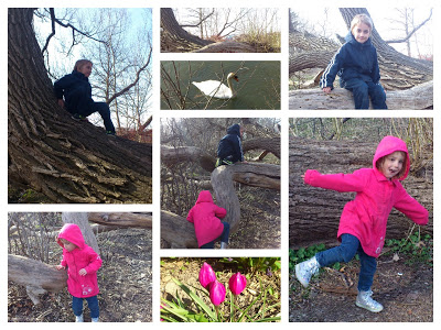 POD: Climbing Adventures.