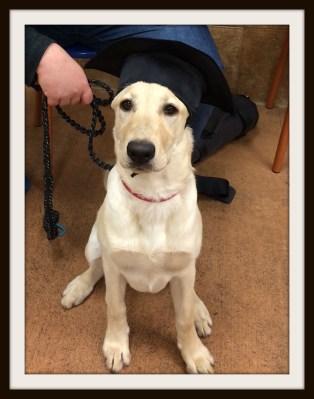 POD: Graduate!