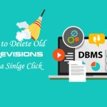 Delete Old WordPress Revisions to Increase Site Speed