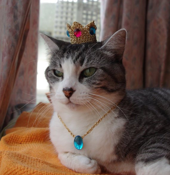 Princess Peach Cat