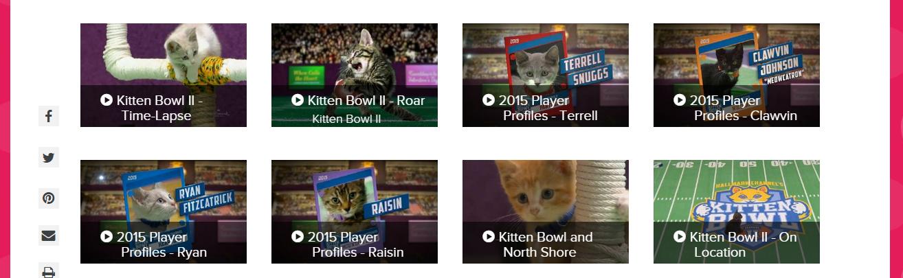 Watch Puppy and Kitten Bowl 2015 Online