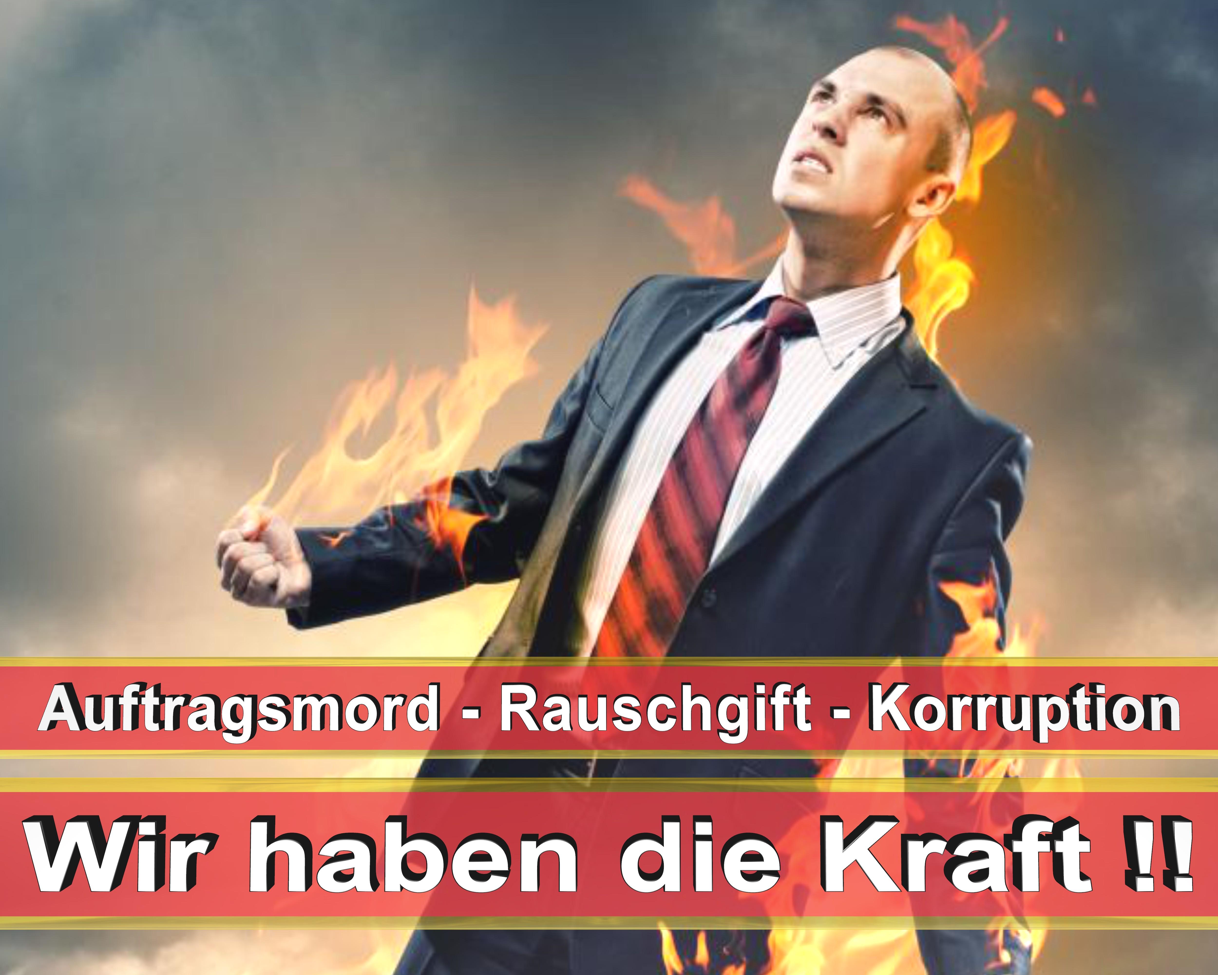 Bundestagswahl 2017 Wahlplakate CDU SPD FDP AFD NPD Angela Merkel Frauke Petry (3)