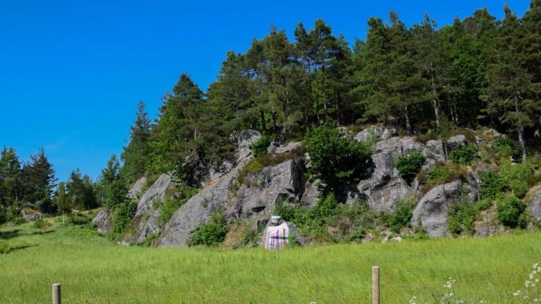 PRESTEN: Langs veien ved Vågsnes står denne fargeklatten av en prest med steinansikt. Foto: Esben Holm Eskelund
