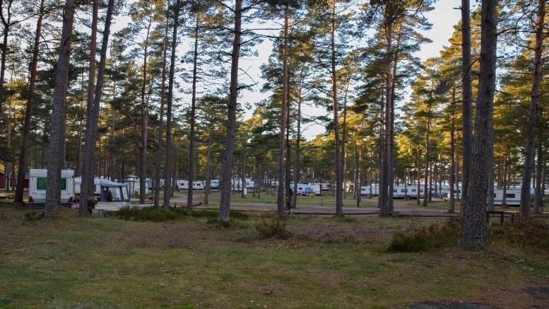 KAN PUSTE UT: – Nå kan driftslederen i HDU puste lettet ut, det finnes ikke miljøkrav til campingplassen lenger, om da ikke Arendal Bystyre skulle innføre noen snart, skriver Alf Martin Sandberg. Arkivfoto: Esben Holm Eskelund