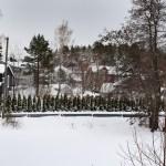 OVER THERE: Plasseringen ved Kjenna ga hagen/åkeren, som tidligere var mer åpen, et særegent kallenavn. Foto: Esben Holm Eskelund