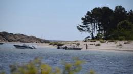 GJESØYA: Helsepartiets Knut Tveiten vil at Gjesøya må vurderes i sammenheng med regulering av campingen på Hoveodden. Arkivfoto: Esben Holm Eskelund