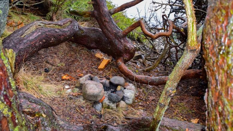 BÅLFORBUD: Folk tenner bål over alt på Hoveodden. Det er på tide å forby uorganisert bålbrenning. Foto: Esben Holm Eskelund
