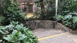 JULIUS-FORGIFTNING: Politiet i Agder ønsker å komme i kontakt med ungdommer fra Aust-Agder i forbindelse med at sjimpansen Julius ble forgiftet med narkotika. Foto: Dyreparken/Politiet