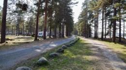 REGULERING: Campingarealet på Hoveodden skal reguleres i kommunal regi. Arkivfoto