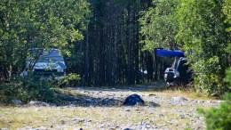 FRITT FREM: Her er det ikke lov å campe med bobil eller vogn, men det er ingen som kontrollerer. Foto: Esben Holm Eskelund