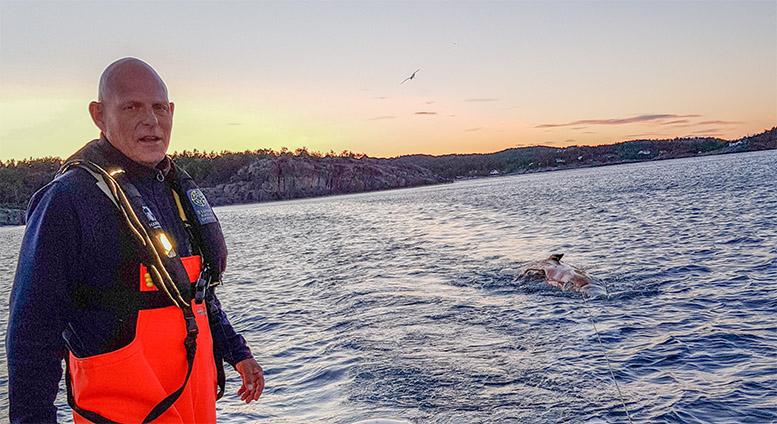 HVALSLEP: Arild Pfaff, seniorrådgiver i Statens Naturoppsyn ønsker avklaring om hvem som skal ta ansvar når døde marine pattedyr blir et problem i skjærgården. Foto: Privat
