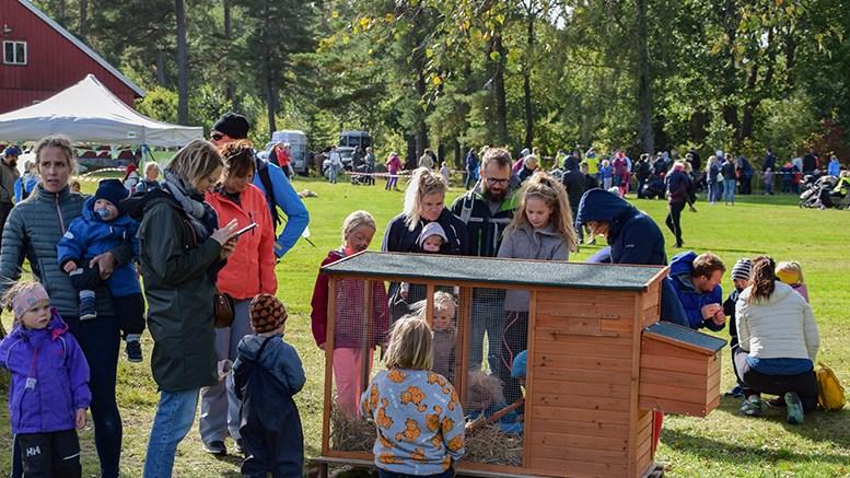 GØY PÅ LANDET: Hundrevis av mennesker kom til Hove og hadde det gøy på landet med 4H. Foto: Esben Holm Eskelund