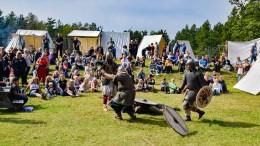 I MINUS: Vikingmarkedet på Hove gikk med tap i 2019. Arkivfoto