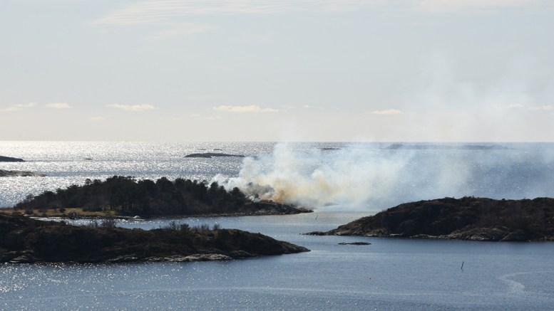 MERDØ-BRANN: Røykutviklingen på Merdø mandag er godt synlig. Her fra Storvidden på Revesand. Foto: Andreas Werner Larsen